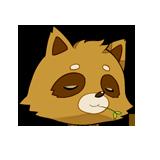 raccoonpro_logo160nobg.png
